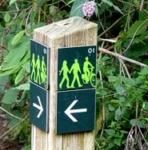 De groene wandeling